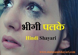 Bheegi Palkein Shayari